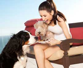 chloe-coscarelli-and-dogs